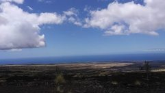 Weather, Cloud, Cumulus, Sky, Azure Sky, Landscape, Plant, Land, Grass, Vegetation, Panoramic, Agavaceae, Grassland, Field, Tree