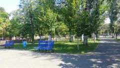 Bench, Furniture, Grass, Plant, Lawn, Park, Path, Tree, Tree Trunk, Road, Vegetation, Park Bench, Trail, Woodland, Forest