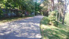 Road, Path, Plant, Tree, Yard, Vehicle, Train, Vegetation, Building, Street, City, Town, Trail, Garden, Land