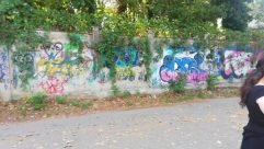 Road, Plant, Vegetation, Graffiti, Tree, Path, Woodland, Land, Forest, Grove, Art, Wall, Garden, Female, Arbour