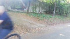 Path, Bicycle, Bike, Vehicle, Road, Wheel, Plant, Vegetation, Tree, Grove, Woodland, Forest, Land, Trail, Grass