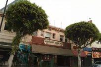 Tree, Plant, Building, Neighborhood, Billboard, Road, City, Town, Vegetation, Housing, Arecaceae, Palm Tree, Street, Vehicle, Car