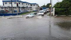 Flood, Automobile, Car, Vehicle, Traffic Light, Light, Wheel, Person Jogging, Road, Countryside, Rural, Shelter, Building, Neighborhood, City