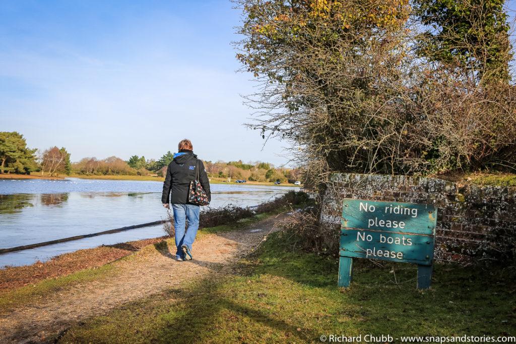 hatchet-pond-new-forest-walk-1021