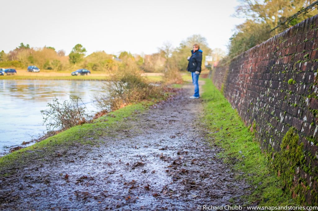 hatchet-pond-new-forest-walk-1023