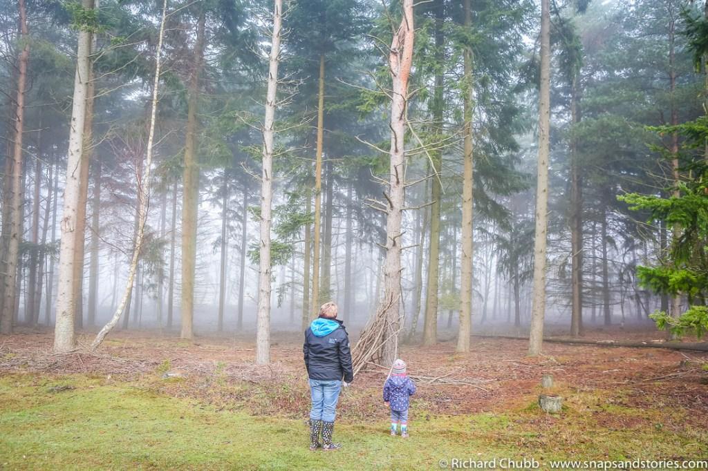marchwood-walk-30-dec-1006