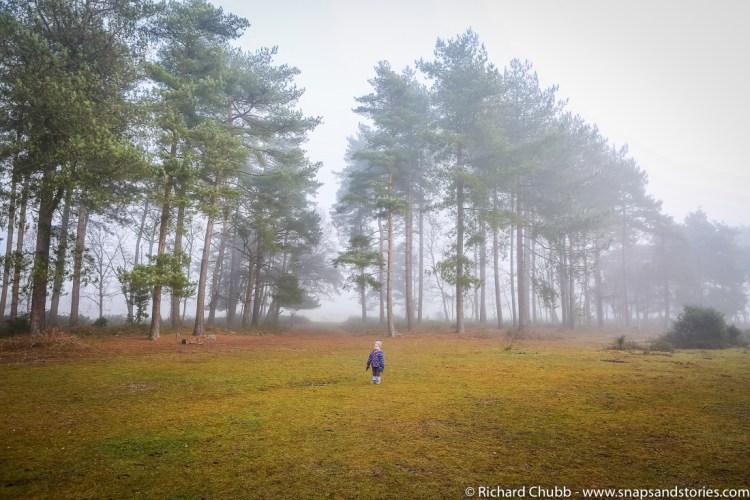 Marchwood Walk 30 Dec-1002