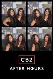 cb2-8 (1)