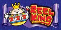 Reel King Novomatic Slot