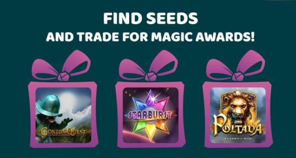 ikibu-casino-seeds