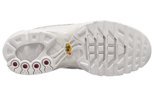 Nike Air Max Plus AR0970-002 Release Date