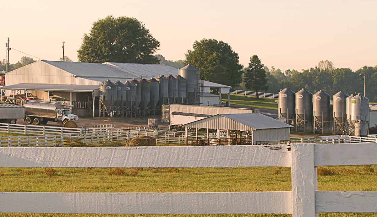The feed farm
