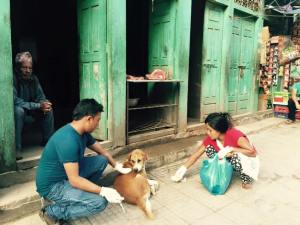 rabies vaccination, treatment