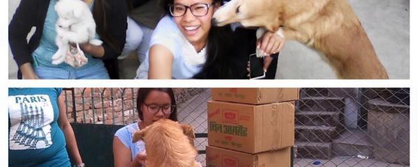 Dog Lover Visits Caring Center