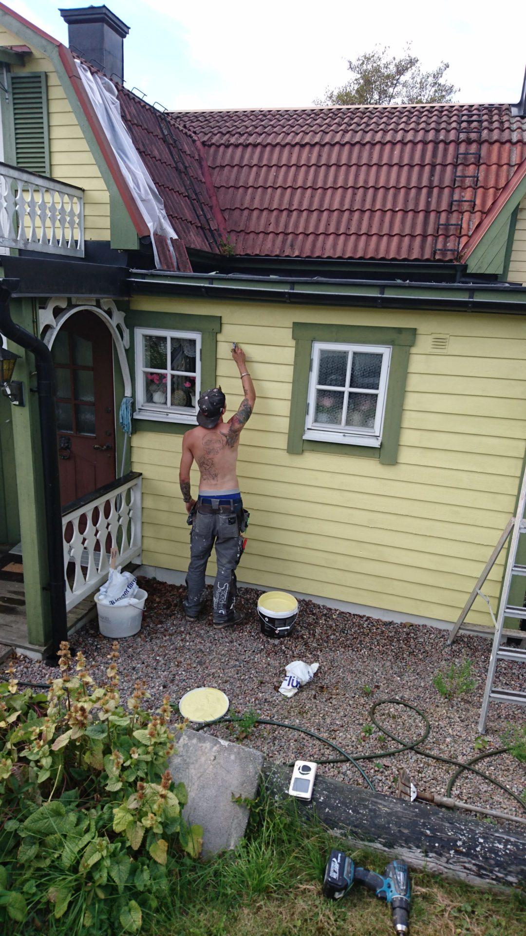 Byte av panel och målning