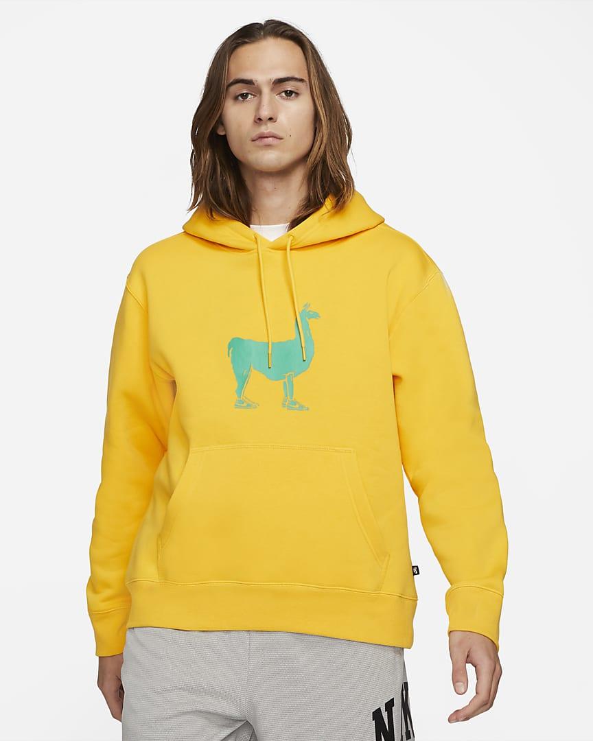 sb-fleece-skateboard-hoodie-zM146p
