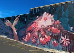 Dunedin - Nouvelle-Zélande
