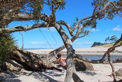 Coromandel - Nouvelle-Zélande