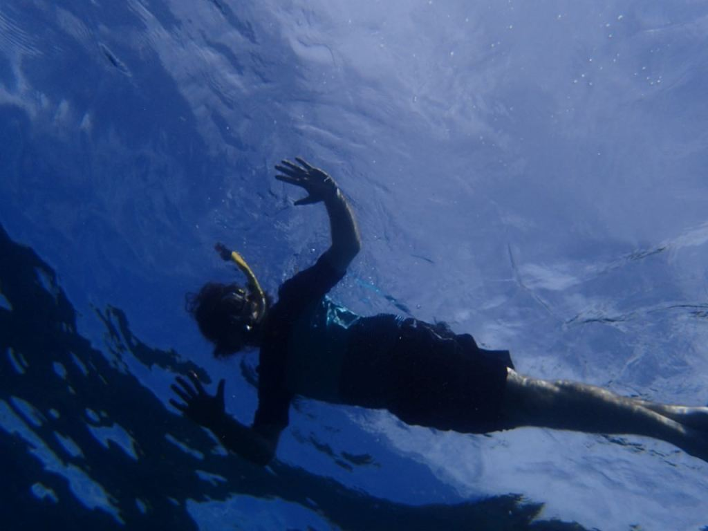 Snorkel Tobago tours
