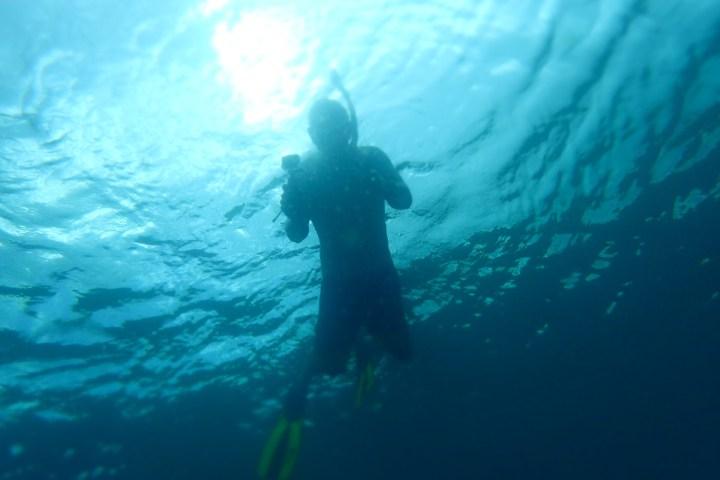 Snorkelling on Mt Irvine