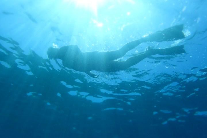 Snorkelling in Tobago