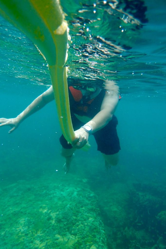 Peters First Snorkel EVER