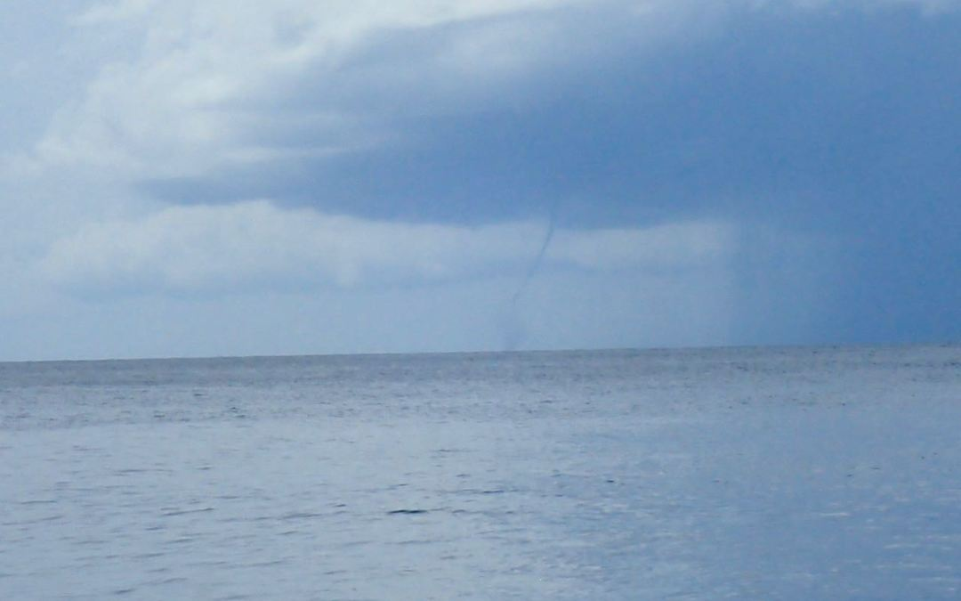 A rare look at a Tobago Waterspout