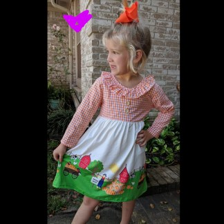 Long Sleeve Orange Gingham Pumpkin Patch Dress