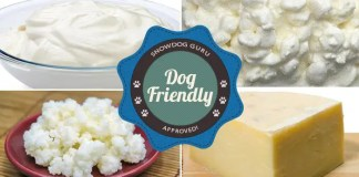 Dog Friendly Dairy