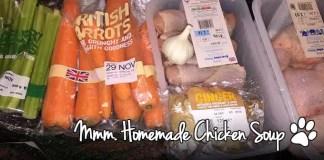 Homemade Chicken Soup