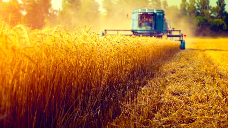 The Future Of Farming: Drones, Robots, And Super Sperm