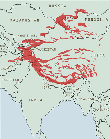 Image result for map of where snow leopards live