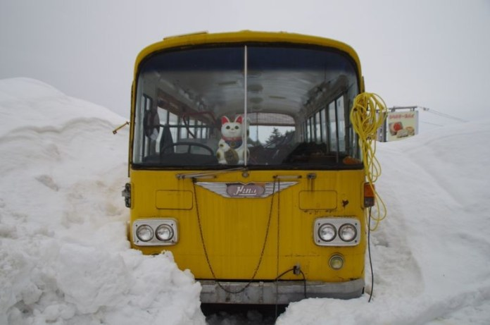 Ingesneeuwde bus