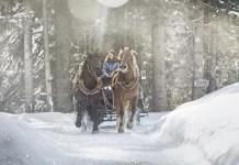 Ritje met de paardenslee. Foto saalbach.com, Mirja Geh