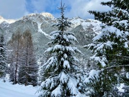 De dolomieten van noord Tirol Foto: Maaike de Vries