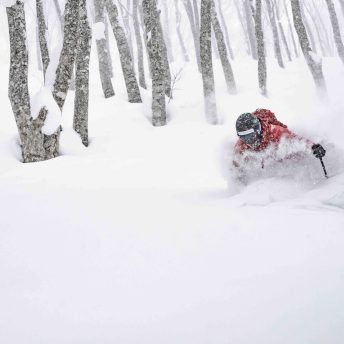 Hakuba Cortina Snow Resort. ©Hiroya Nakata