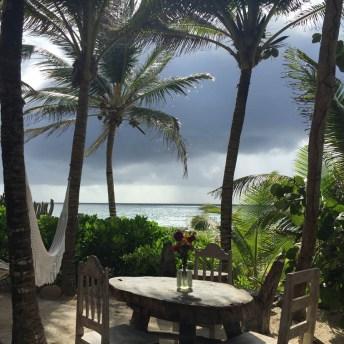 nest_living_beach_view