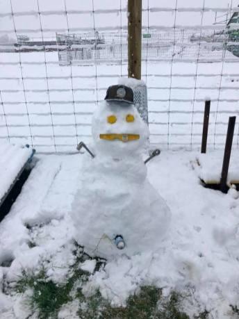 Snowman by Eli Fynn