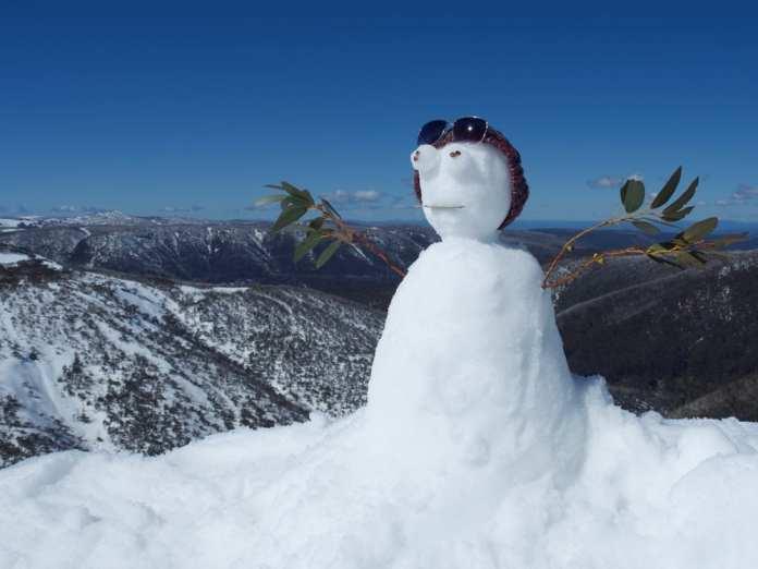 snow gum man