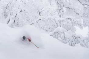 Drew Jolowicz skiing. Akita Prefecture, Ani article. Picture: Dylan Robinson