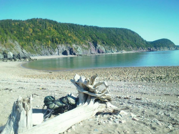camping in maritime provinces: beach with tow tide and fallen tree in foreground