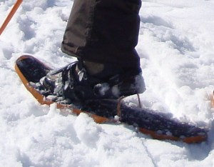 Ankle injuries are common in snow sports.