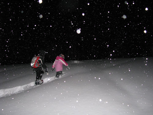 snowshoeing tips for snowshoeing at night