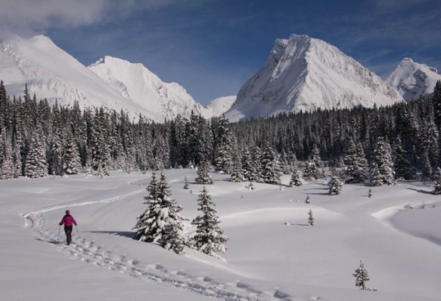snowshoer in distance on Chester Lake Trail in Alberta