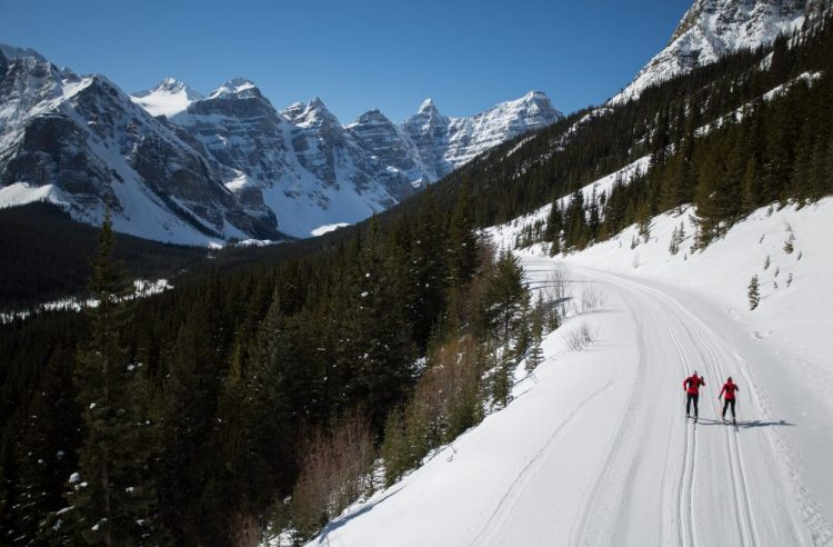 xc skiers on Lake Moraine Rd near Lake Louise