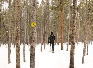 Snowshoeing in the woods at Galena Lodge.