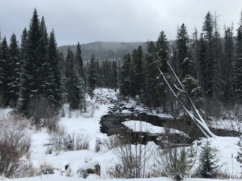 river, snow coming, Monarch Lake