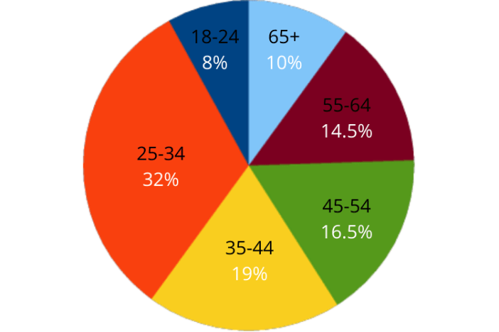 Snowshoe Magazine advertising: pie chart showing ages of audience