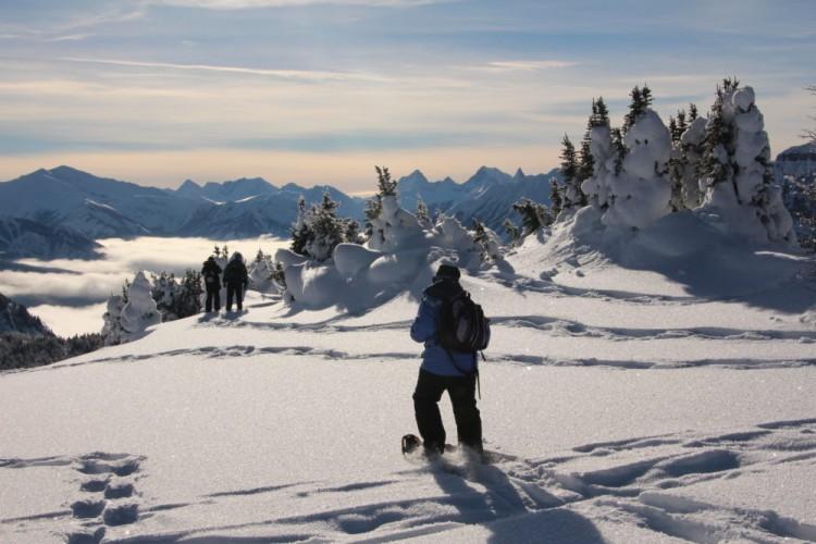 person snowshoeing in powder at Sunshine Village, Banff