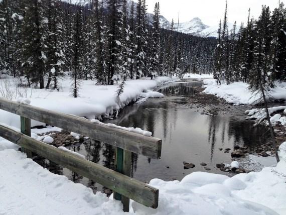 Trails at Lake Louise